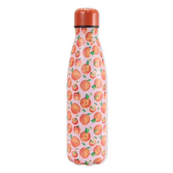 Fruit Double Walled Bottle - 490ml